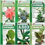 Самые известные комнатные растения мира в 7 книгах / Кулиш С. В. , Комарова Г. В. / 2005-2008