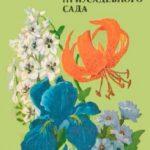 Декоративные растения для приусадебного сада / Тамберг Т.Г., Васильева М.Ю., Петренко Н.А. / 1979