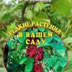 Редкие растения в вашем саду  / Селиванов А.М. / 2013