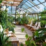 Как построить и оборудовать зимний сад