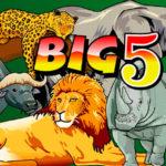 Игровой автомат «Big 5» в казино Вулкан Делюкс
