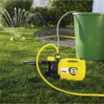 Как правильно выбрать мотопомпу для полива огорода