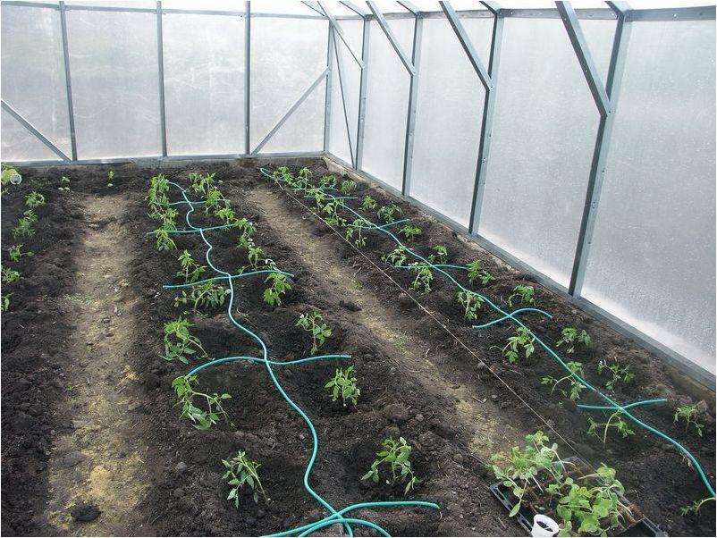 Система подземного полива огорода